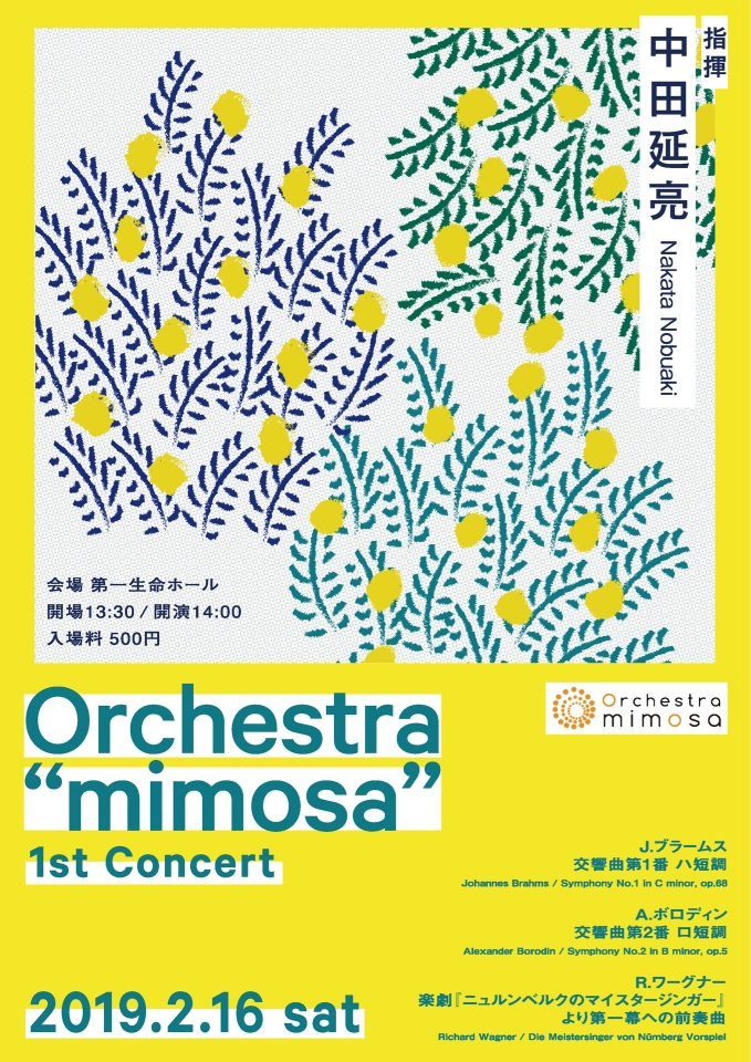 "Orchestra ""mimosa"" 1st Concert"