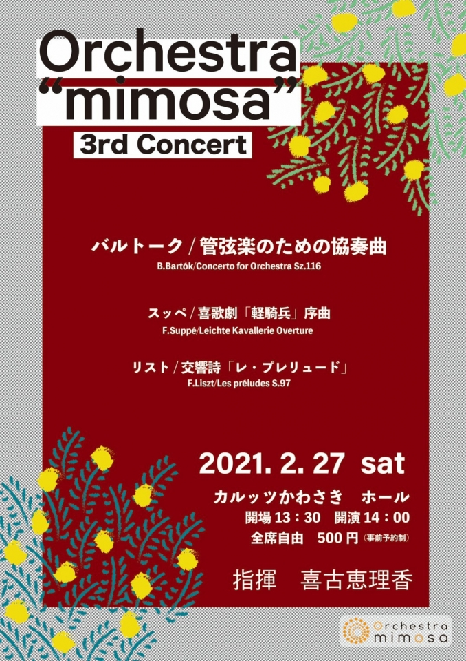 "Orchestra ""mimosa"" 3rd Concert"