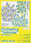 """Orchestra """"mimosa"""" 1st Concert"""